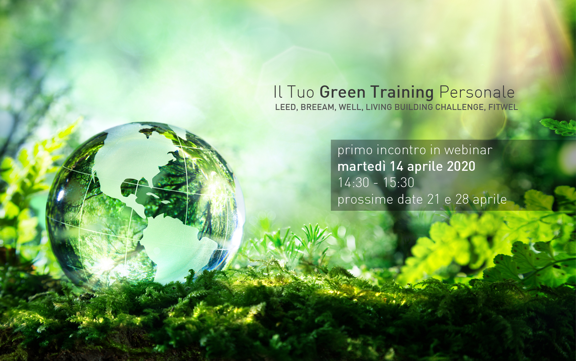 Macro Design Studio_banner_green training